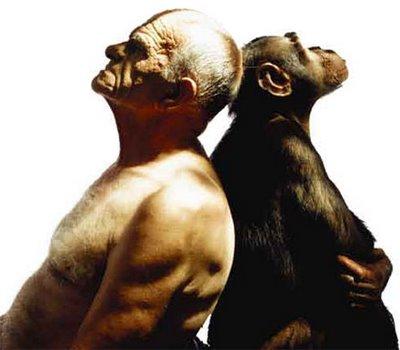 o animal humano manhoodbrasil